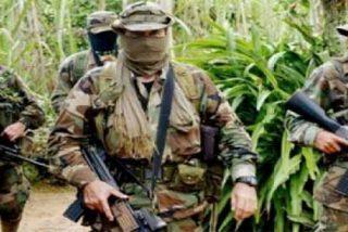 """Colombia: """"En Tierralta (lugar donde asesinaron a una mujer frente a sus hijos) impera el control paramilitar"""""""