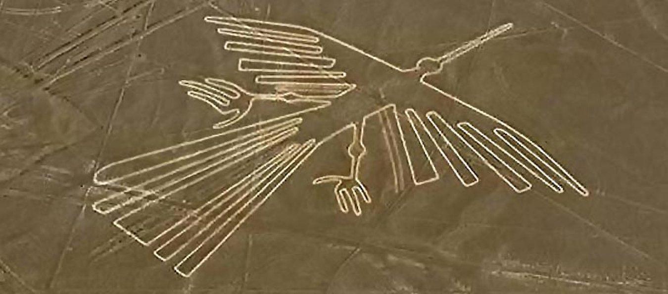 Desvelan el misterio de las aves dibujadas en las Líneas de Nasca y cambió todo lo que se creía hasta ahora