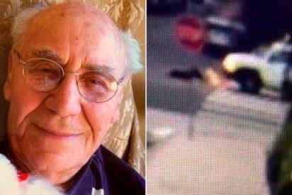 Sobrevive al Holocausto nazi y muere a los 91 años bajo el coche de un desalmado conductor