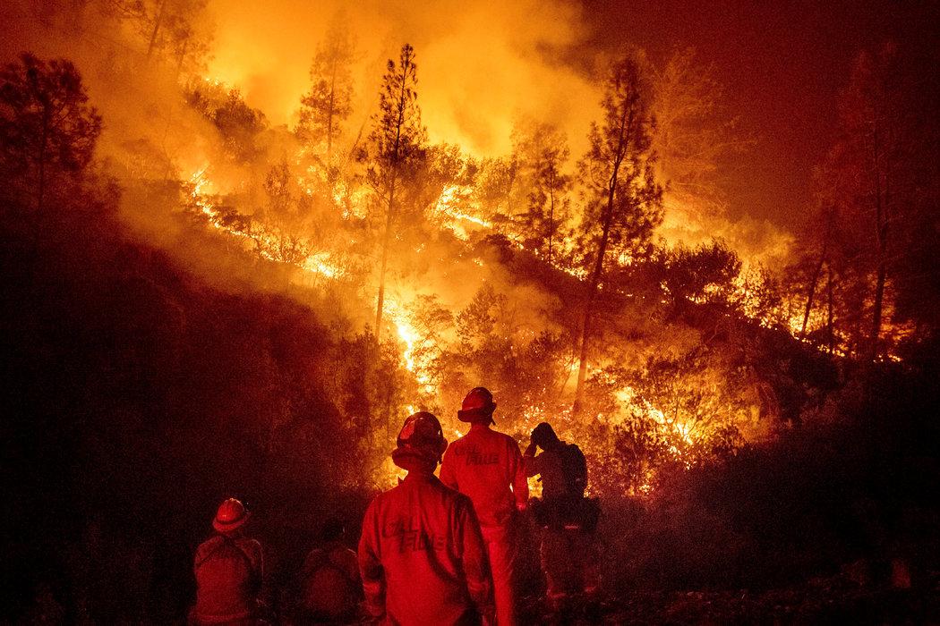 Se descubre que fue un tipo, intentando eliminar un nido de avispas, quien provocó el mayor incendio forestal de la historia de California