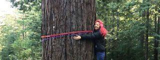 Los gurús de Silicon Valley 'reinventan' los cementerios usando lo árboles como tumbas