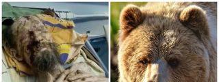 """Sobrevivió un mes atrapado en la cueva de un oso en Rusia: """"Me guardó como comida para el futuro"""""""