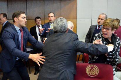 Vídeo: Así fue la escandalosa pelea a puños en el Senado de Paraguay