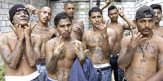 Descuartizamientos y asesinatos atroces: Vuelve el crimen a Los Ángeles y acusan a la Mara Salvatrucha
