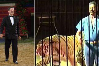 Experimentado domador muere en las fauces de cuatro tigres de un circo en Italia