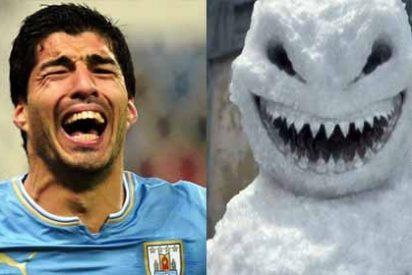 """La broma más desgraciada contra Luis Suarez y sus dientes de """"tiburón mutante"""" que se hizo viral en las redes"""