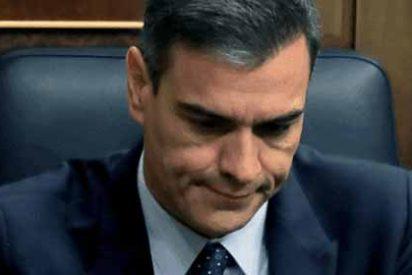 """Alarma económica por las políticas de Pedro Sánchez para España: """"Generará pobreza, menos empleo y más corrupción"""""""