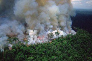 'Cualquier parecido con la realidad no es mera coincidencia': las 'fakes photos' del incendio de la Amazonía que abrasan las redes sociales