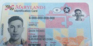 Estafador cobraba miles de dólares a indocumentados a cambio de licencias de conducir