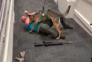 Un veterano de guerra entrena perros para atacar a tiradores dentro de las escuelas