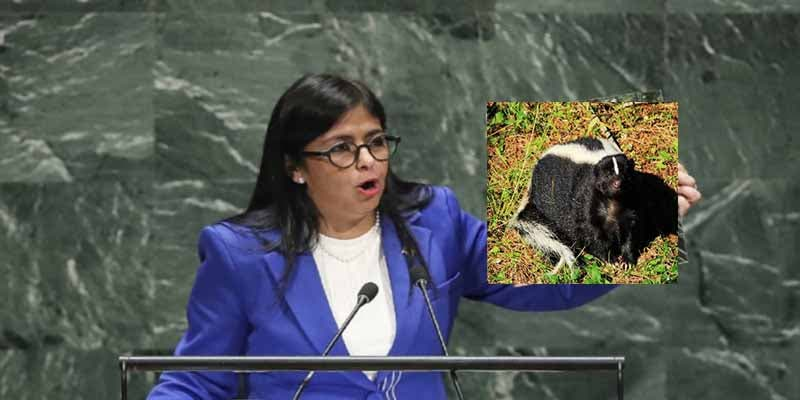 ¡Cuidado una mofeta!: Salieron disparados los delegados en la ONU cuando iba a hablar la chavista Delcy Rodríguez