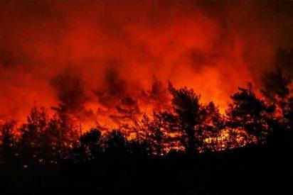 Incendios en el Amazonas: ¿Por qué La Sexta y otros medios progres ya no hablan del 'pulmón vegetal del planeta'?