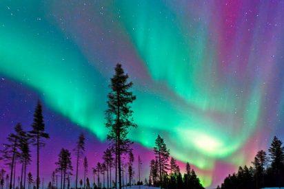 Auroras Boreales, ¿pájaros de mal agüero?