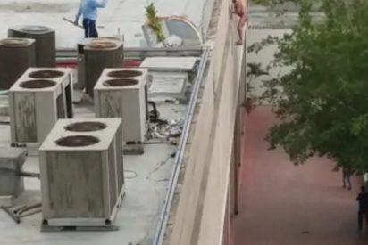 Vídeo impactante: Un hombre se hizo papilla tras tirarse de lo más alto, había apuñalado a su mujer y a su hijo