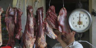El perturbante negocio de la carne de perro en México