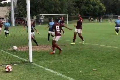 Goleada histórica: Éste equipo ganó por 56 a 0 y logró un nuevo récord (Vídeo)