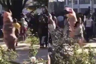 """""""El dinosaurio manifestante"""" que protesta en Chile se hizo viral en las redes"""