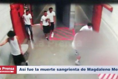 Vídeo: Así asesinaron al hombre que vinculó a hermano de presidente de Honduras con el narcotráfico