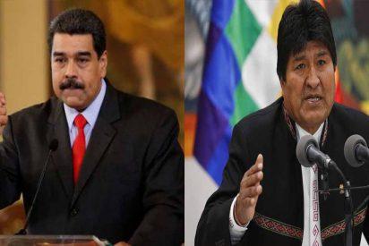 """Las pataletas del dictador Nicolás Maduro por los 'errores' de Evo Morales: """"Es legalista, constitucionalista y busca el diálogo"""""""