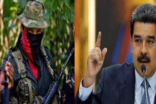 Así operan los grupos terroristas en escuelas de Venezuela con el beneplácito del régimen de Nicolás Maduro