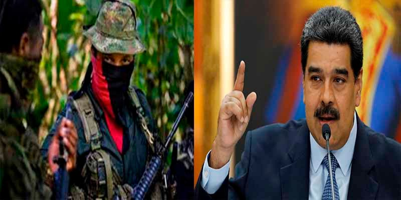 El chavismo se rinde ante el narcotráfico: El 44% de las tropas del ELN ya reside en Venezuela