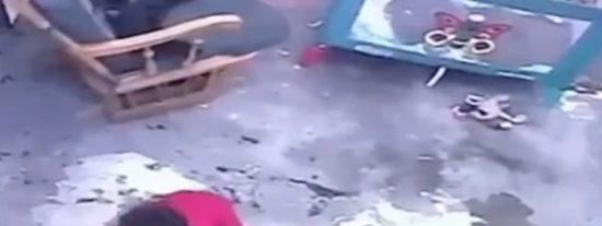El 'gatito héroe' que evitó que un bebé cayera de unas escaleras en Colombia