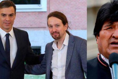 Pedro Sánchez le 'hace ojitos' a Podemos de cara a un pacto de Gobierno: Apoya al fraudulento Evo Morales y condena la intervención del Ejército de Bolivia
