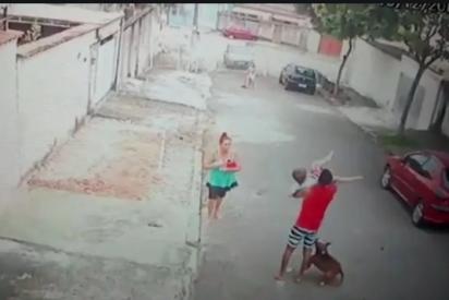 Brasil: un joven pelea contra un violento pitbull para salvar a un niño